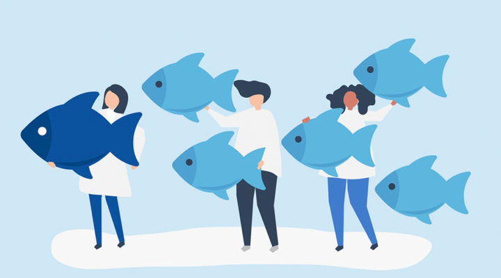 En tu primer día en IMEP no te sientas como un pez